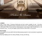 Small Business Web Design Pungo VA