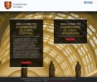 Advisory Services Website Design Arlington VA