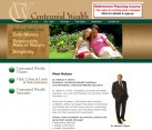 Website Design Finance Planning Consultant