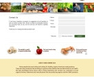 Website Design Eastern Shore VA