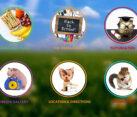Childcare Center Web Design