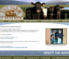 Website Design Greene County VA