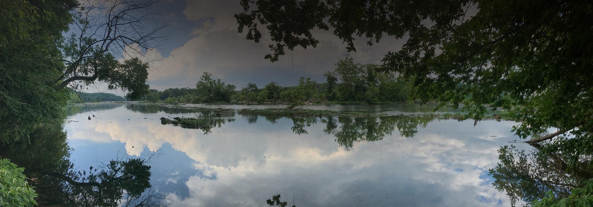 Web Design Lake Ridge VA